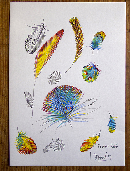 Plumes_01