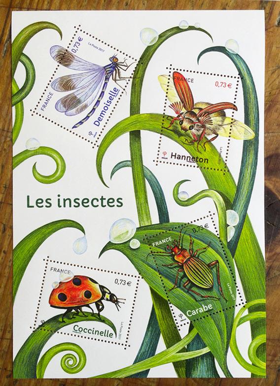 T_insectes